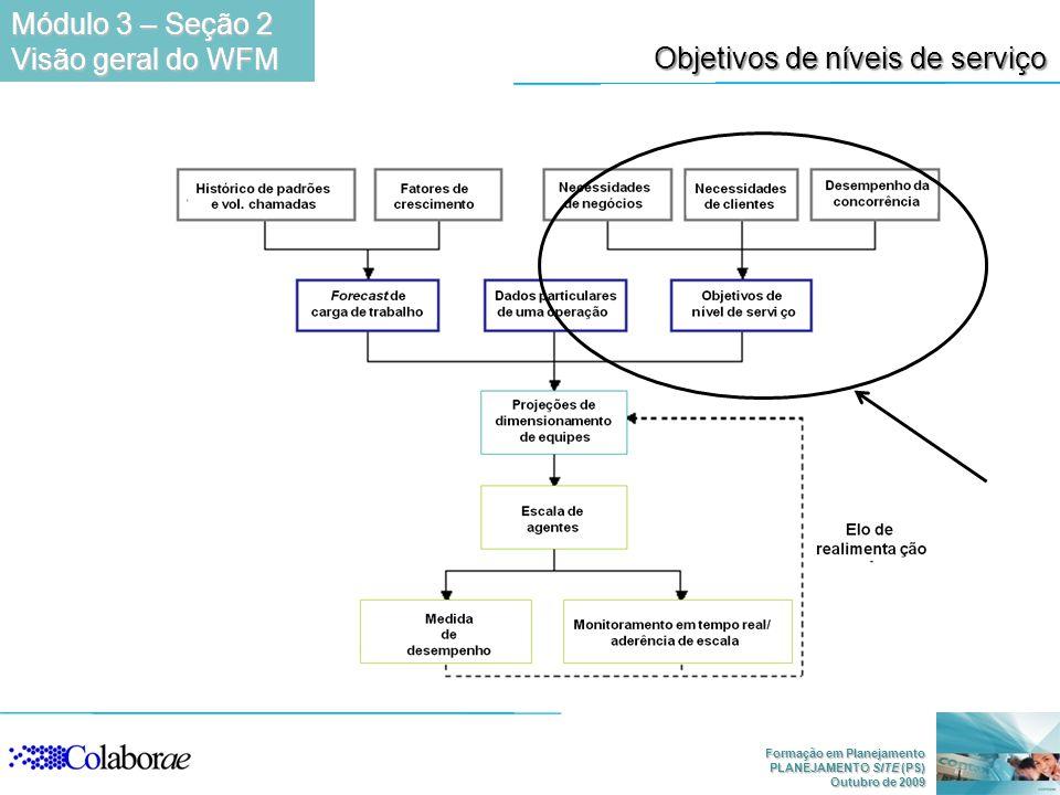 Formação em Planejamento PLANEJAMENTO SITE (PS) Outubro de 2009 Objetivos de níveis de serviço Módulo 3 – Seção 2 Visão geral do WFM