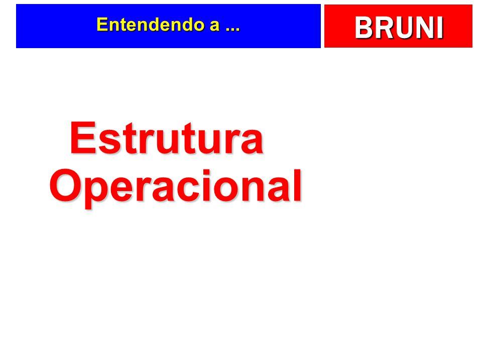 BRUNI Entendendo a... Estrutura Operacional