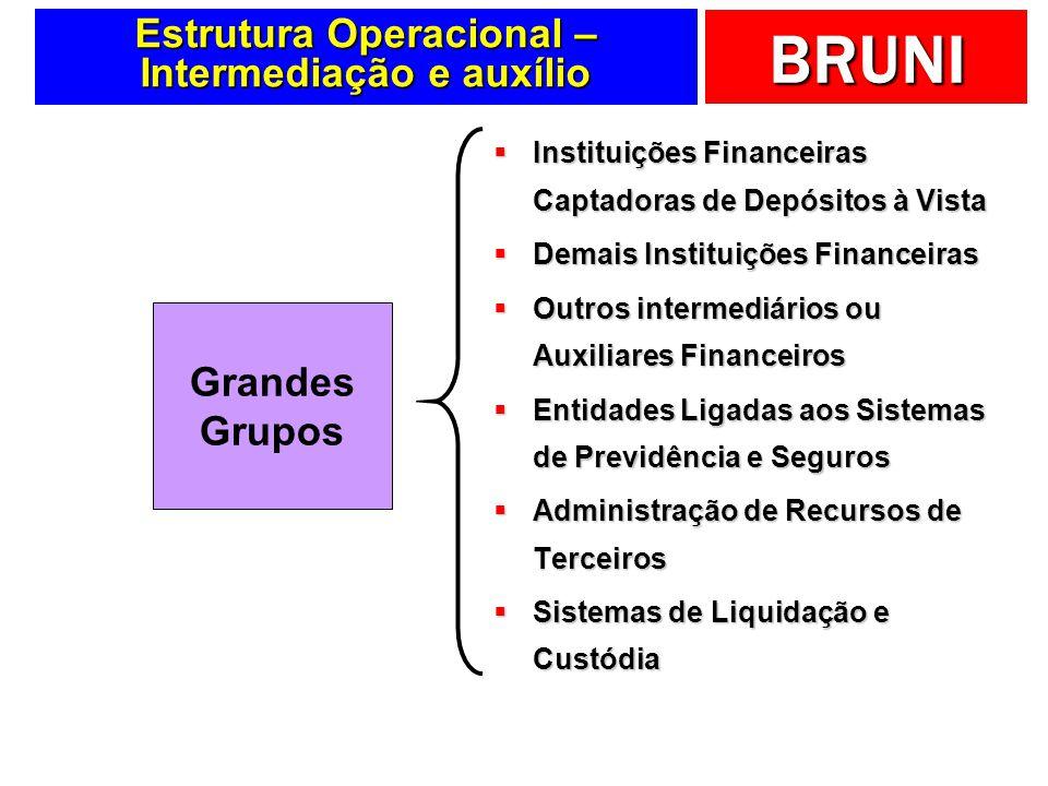 BRUNI Estrutura Operacional – Intermediação e auxílio Instituições Financeiras Captadoras de Depósitos à Vista Instituições Financeiras Captadoras de