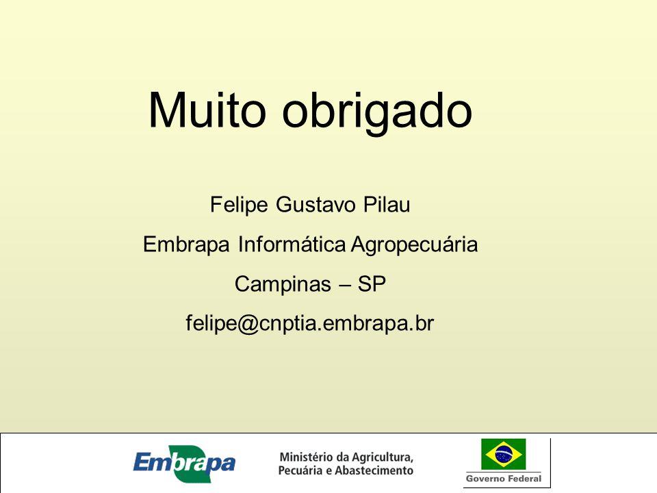 Muito obrigado Felipe Gustavo Pilau Embrapa Informática Agropecuária Campinas – SP felipe@cnptia.embrapa.br