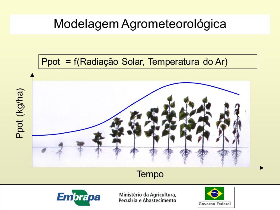 Ppot = f(Radiação Solar, Temperatura do Ar) Ppot (kg/ha) Tempo Modelagem Agrometeorológica