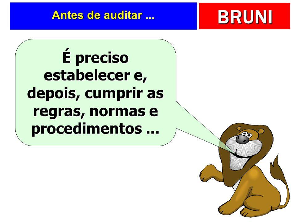 BRUNI Resposta.... Antes de fornecer informações para os externos, é preciso conferir sua qualidade! Auditoria Externa