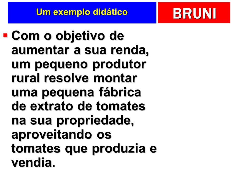 BRUNI Um exemplo didático Com o objetivo de aumentar a sua renda, um pequeno produtor rural resolve montar uma pequena fábrica de extrato de tomates n