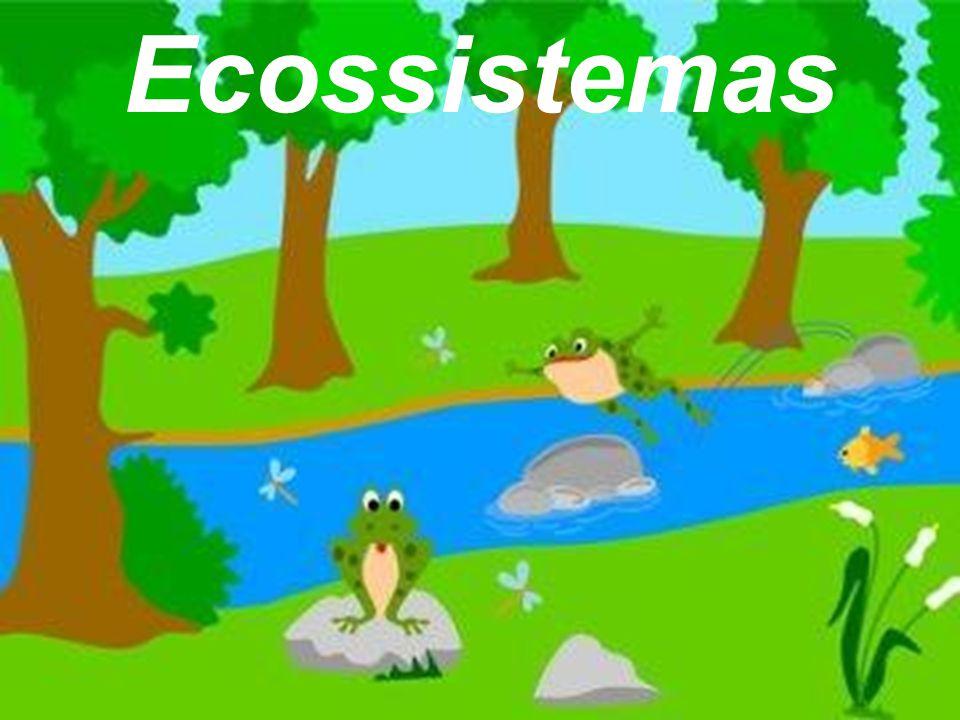 Ambientes naturais