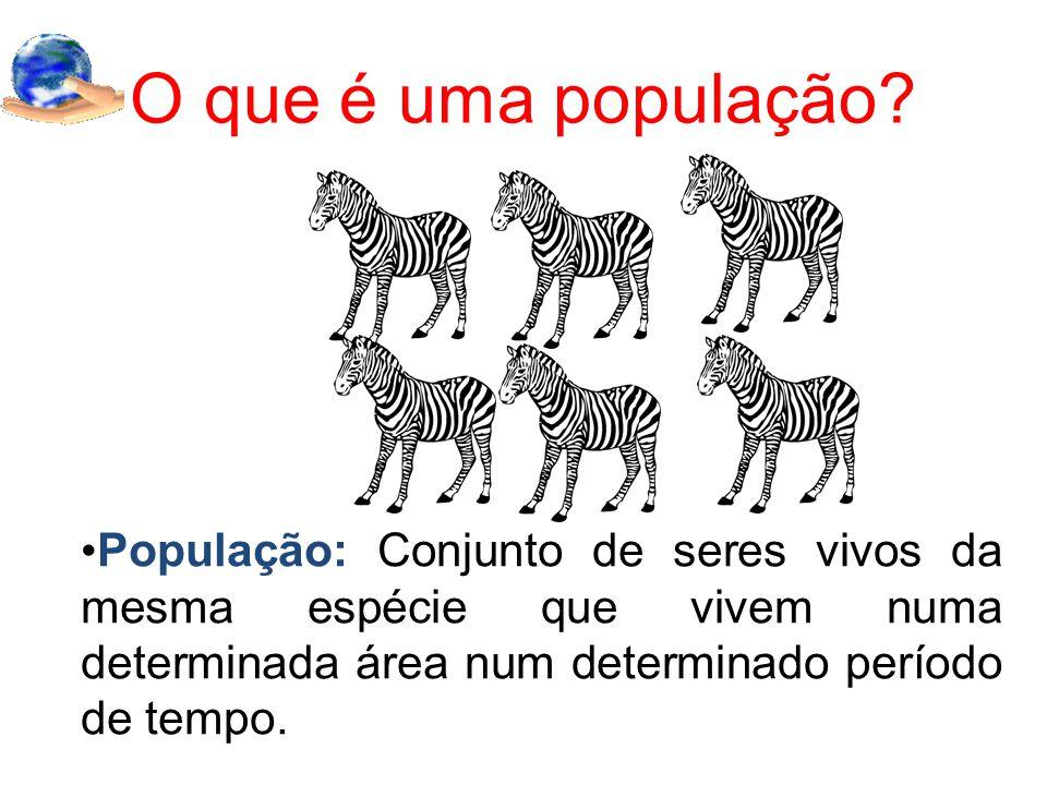 O que é uma população? População: Conjunto de seres vivos da mesma espécie que vivem numa determinada área num determinado período de tempo.
