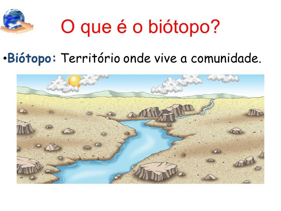 O que é o biótopo? Biótopo: Território onde vive a comunidade.