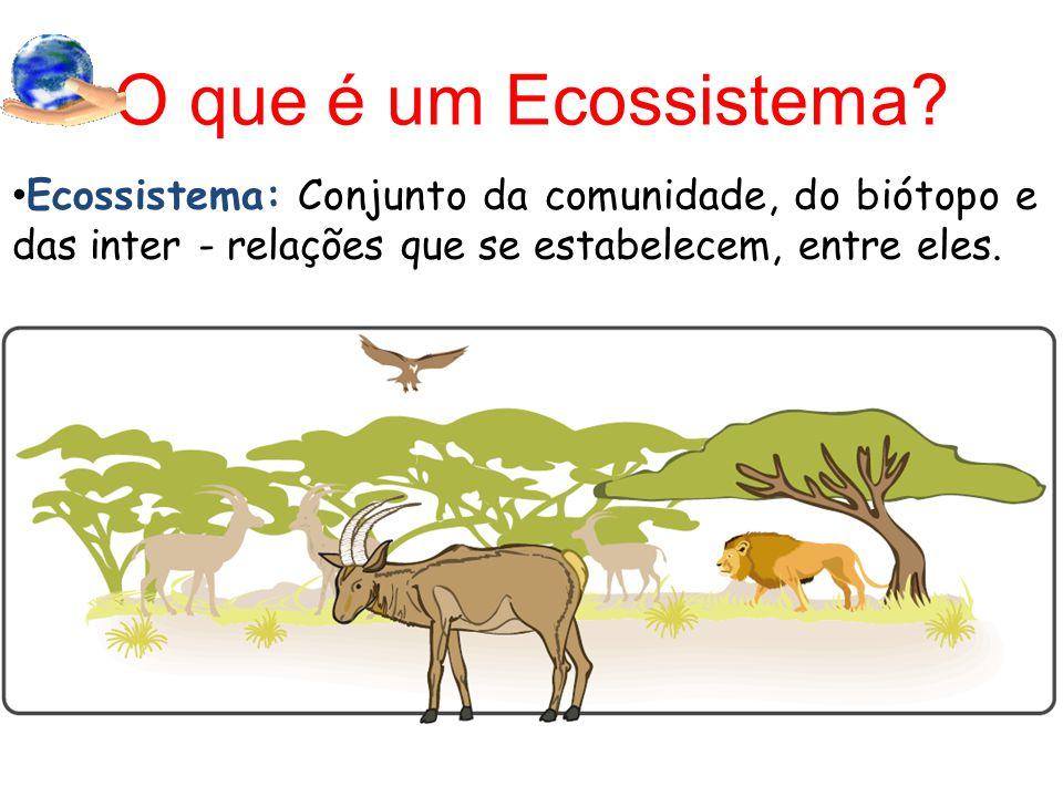 O que é um Ecossistema? Ecossistema: Conjunto da comunidade, do biótopo e das inter - relações que se estabelecem, entre eles.