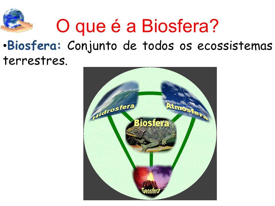 O que é a Biosfera? Biosfera: Conjunto de todos os ecossistemas terrestres.