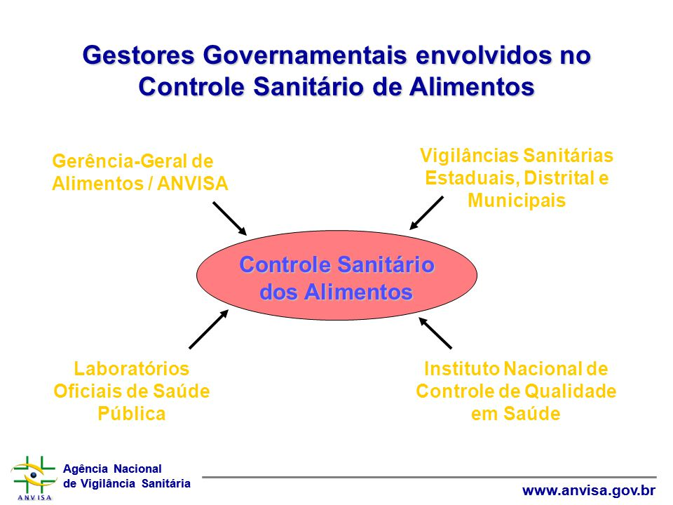 Agência Nacional de Vigilância Sanitária www.anvisa.gov.br Agência Nacional de Vigilância Sanitária www.anvisa.gov.br Gestores Governamentais envolvid