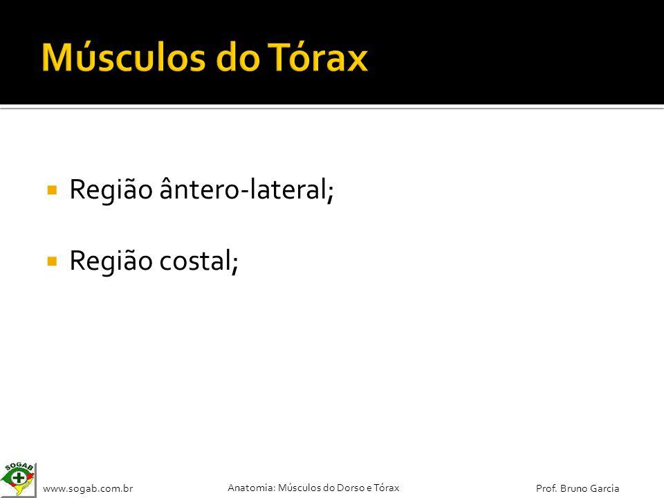 www.sogab.com.br Anatomia: Músculos do Dorso e Tórax Prof. Bruno Garcia Região ântero-lateral; Região costal;