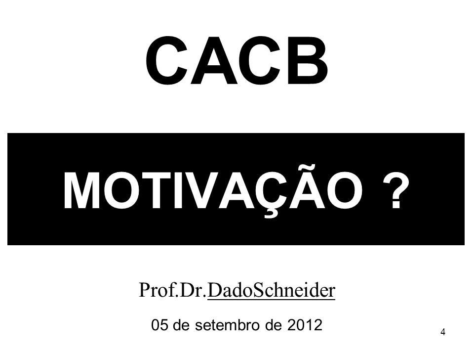 4 MOTIVAÇÃO Prof.Dr.DadoSchneider 05 de setembro de 2012 CACB