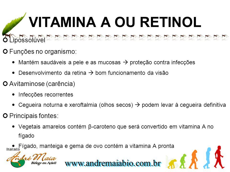 www.andremaiabio.com.brwww.andremaiabio.com.br VITAMINA A OU RETINOL Lipossolúvel Funções no organismo: Mantém saudáveis a pele e as mucosas proteção