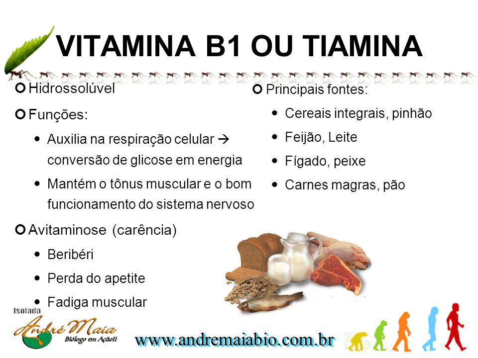 www.andremaiabio.com.brwww.andremaiabio.com.br VITAMINA B1 OU TIAMINA Hidrossolúvel Funções: Auxilia na respiração celular conversão de glicose em ene