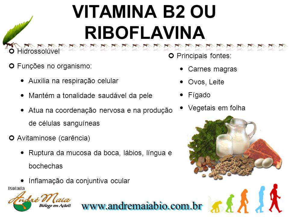 www.andremaiabio.com.brwww.andremaiabio.com.br VITAMINA B2 OU RIBOFLAVINA Hidrossolúvel Funções no organismo: Auxilia na respiração celular Mantém a t