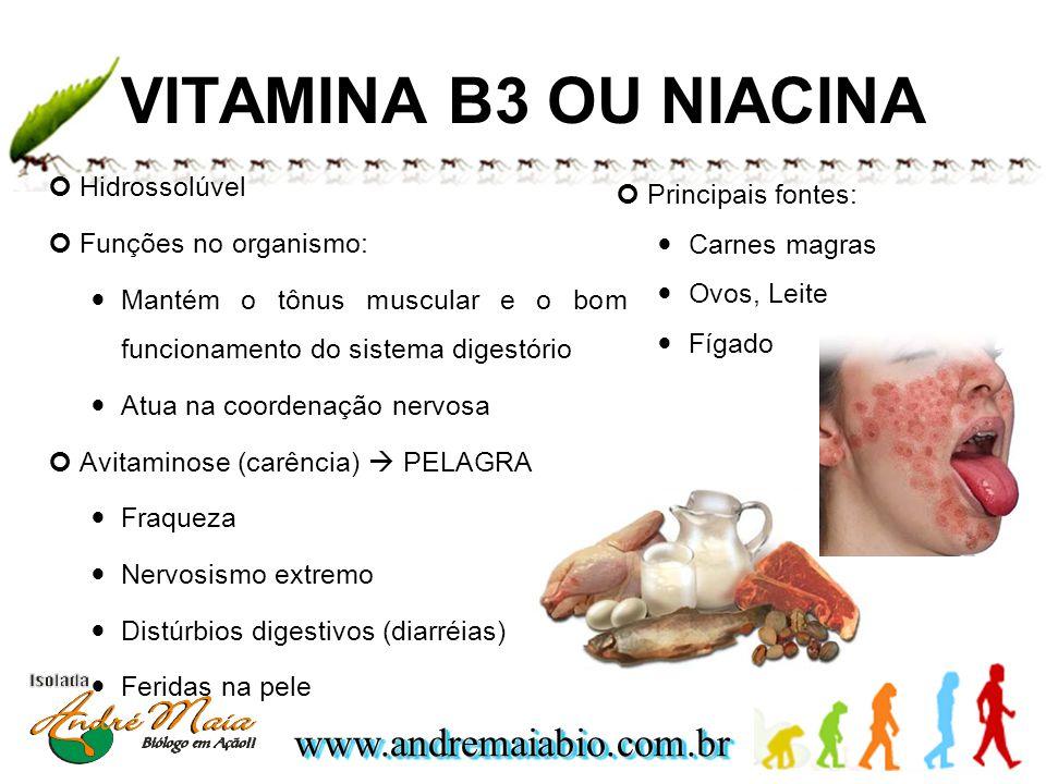 www.andremaiabio.com.brwww.andremaiabio.com.br VITAMINA B3 OU NIACINA Hidrossolúvel Funções no organismo: Mantém o tônus muscular e o bom funcionament