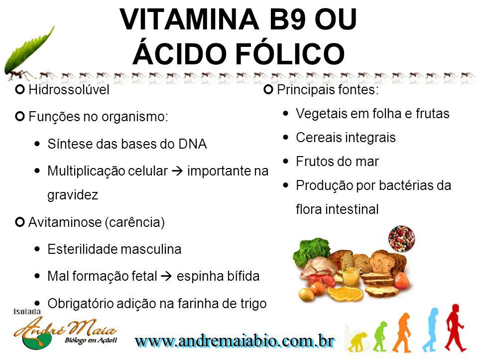 www.andremaiabio.com.brwww.andremaiabio.com.br Hidrossolúvel Funções no organismo: Síntese das bases do DNA Multiplicação celular importante na gravid