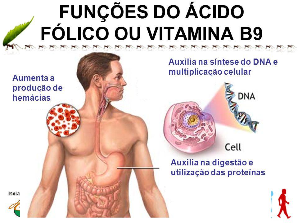 www.andremaiabio.com.brwww.andremaiabio.com.br FUNÇÕES DO ÁCIDO FÓLICO OU VITAMINA B9 Aumenta a produção de hemácias Auxilia na síntese do DNA e multi