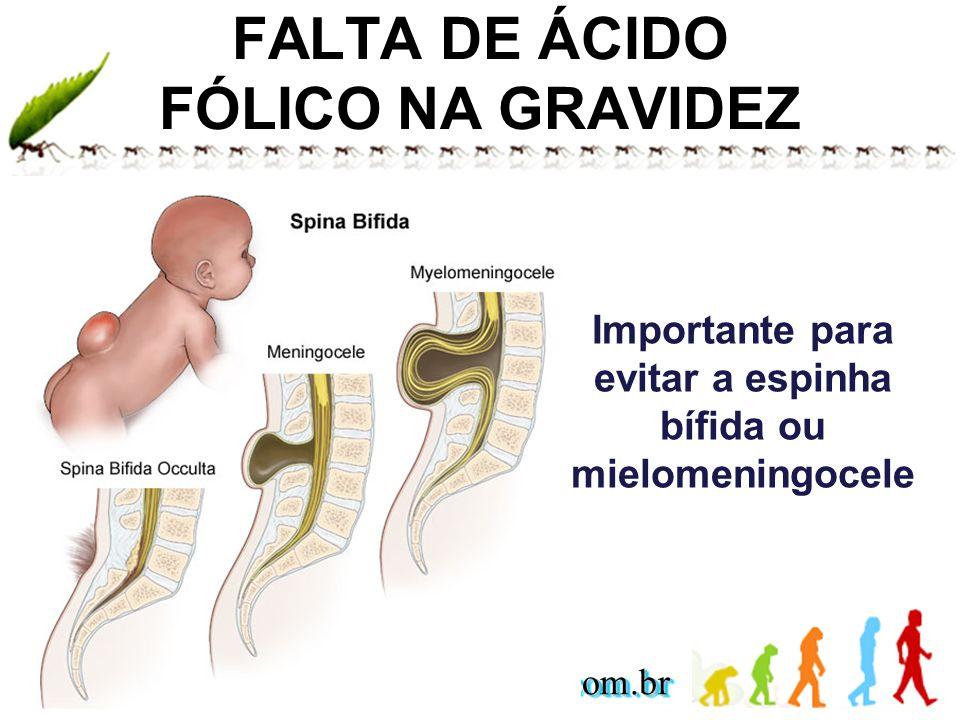 www.andremaiabio.com.brwww.andremaiabio.com.br FALTA DE ÁCIDO FÓLICO NA GRAVIDEZ Importante para evitar a espinha bífida ou mielomeningocele