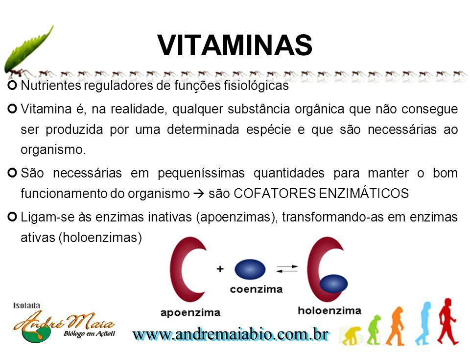 www.andremaiabio.com.brwww.andremaiabio.com.br Nutrientes reguladores de funções fisiológicas Vitamina é, na realidade, qualquer substância orgânica q