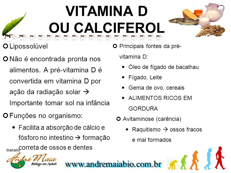 www.andremaiabio.com.brwww.andremaiabio.com.br VITAMINA D OU CALCIFEROL Lipossolúvel Não é encontrada pronta nos alimentos. A pré-vitamina D é convert