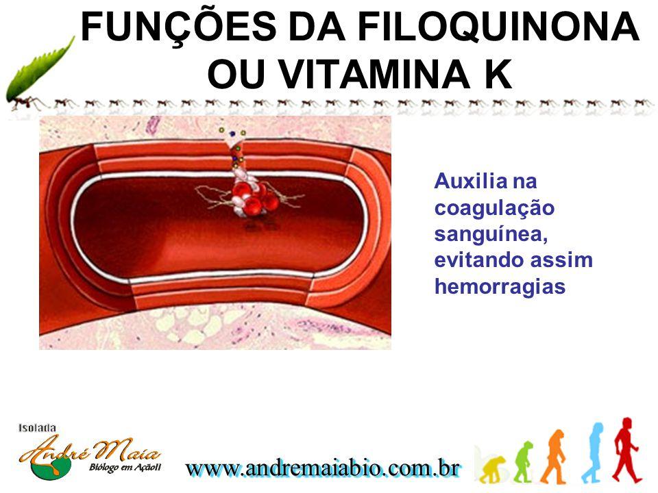 www.andremaiabio.com.brwww.andremaiabio.com.br FUNÇÕES DA FILOQUINONA OU VITAMINA K Auxilia na coagulação sanguínea, evitando assim hemorragias