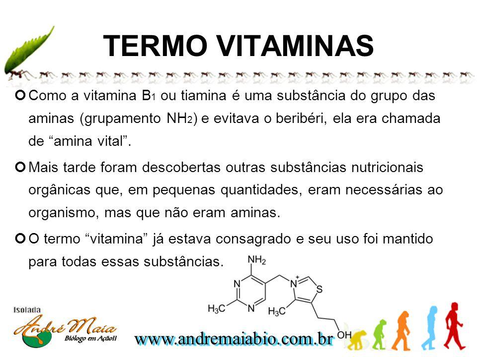 www.andremaiabio.com.brwww.andremaiabio.com.br TERMO VITAMINAS Como a vitamina B 1 ou tiamina é uma substância do grupo das aminas (grupamento NH 2 )