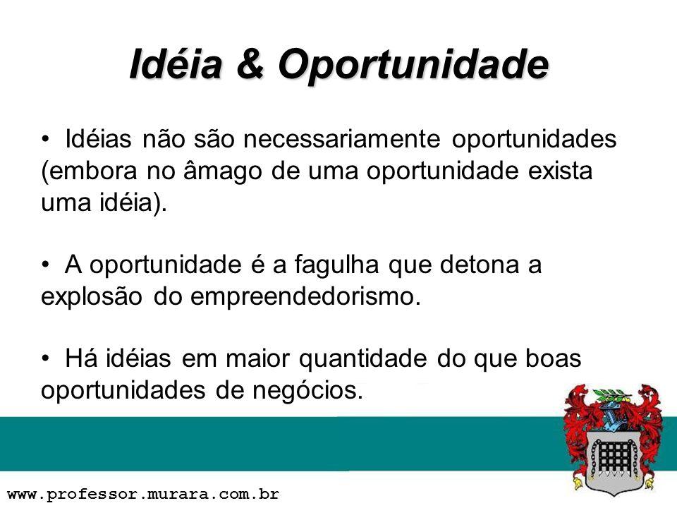 Idéia & Oportunidade Idéias não são necessariamente oportunidades (embora no âmago de uma oportunidade exista uma idéia). A oportunidade é a fagulha q