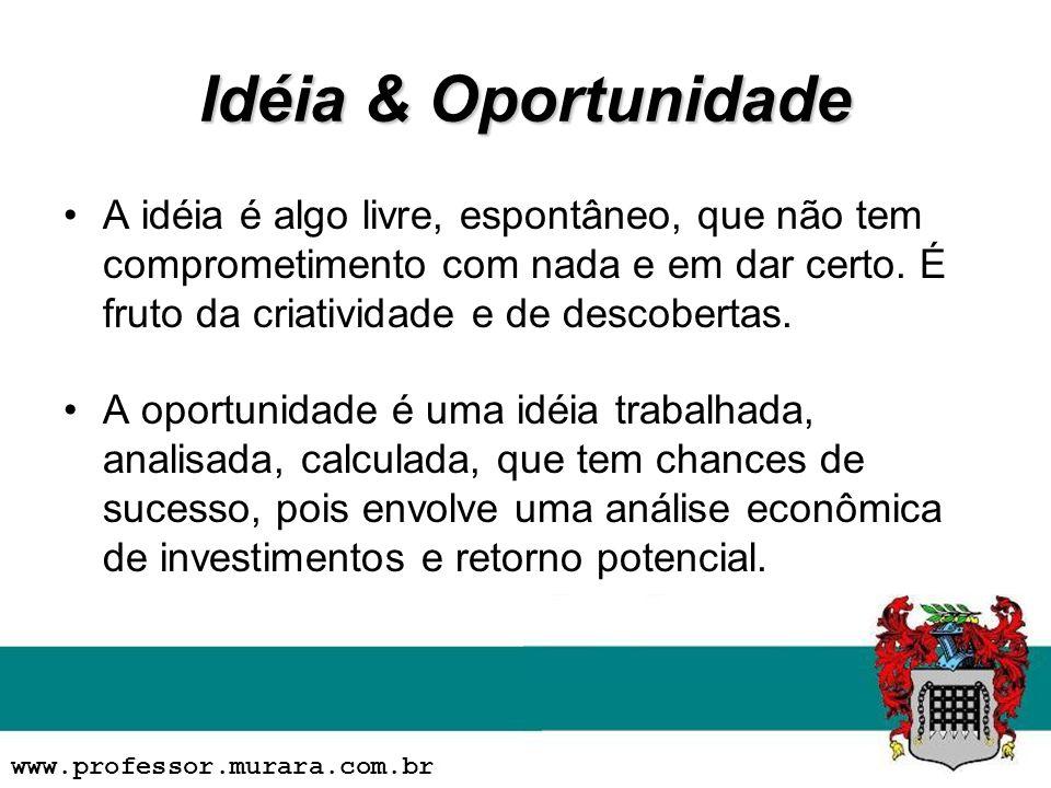 Idéia & Oportunidade A idéia é algo livre, espontâneo, que não tem comprometimento com nada e em dar certo.