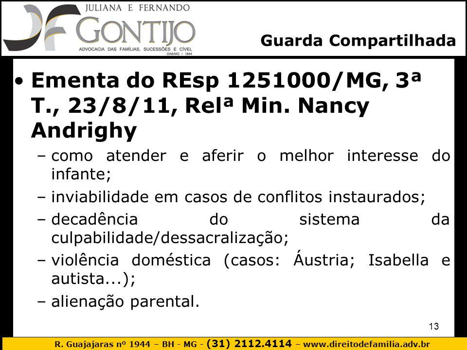 R. Guajajaras nº 1944 – BH - MG - (31) 2112.4114 – www.direitodefamilia.adv.br 13 Ementa do REsp 1251000/MG, 3ª T., 23/8/11, Relª Min. Nancy Andrighy