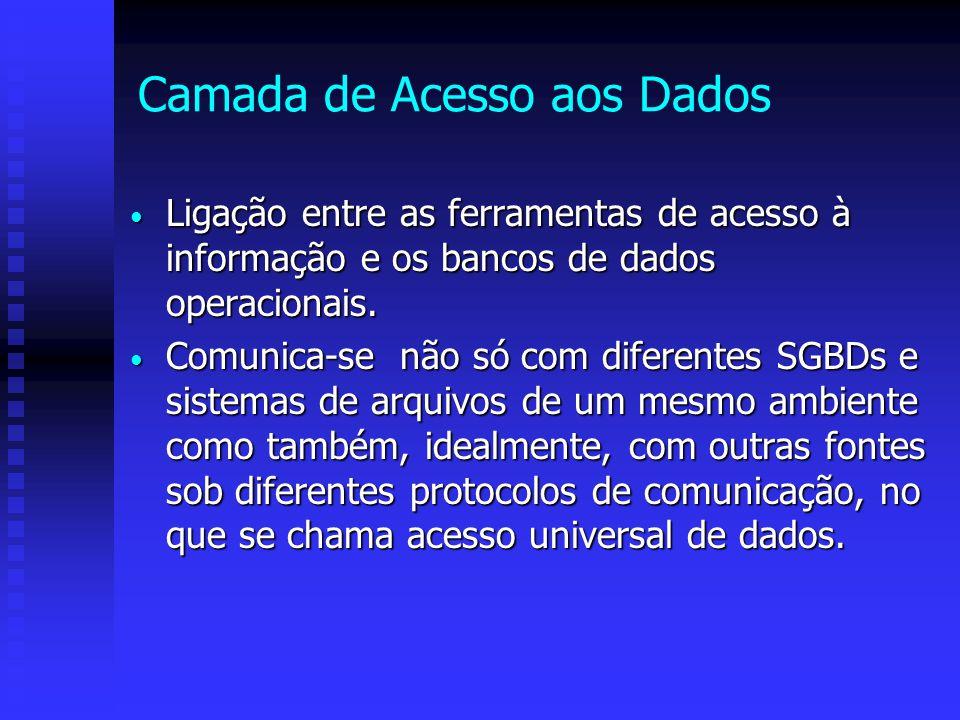 Camada de Acesso aos Dados Ligação entre as ferramentas de acesso à informação e os bancos de dados operacionais. Ligação entre as ferramentas de aces