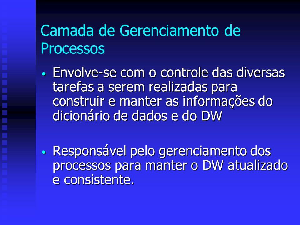 Camada de Gerenciamento de Processos Envolve-se com o controle das diversas tarefas a serem realizadas para construir e manter as informações do dicio