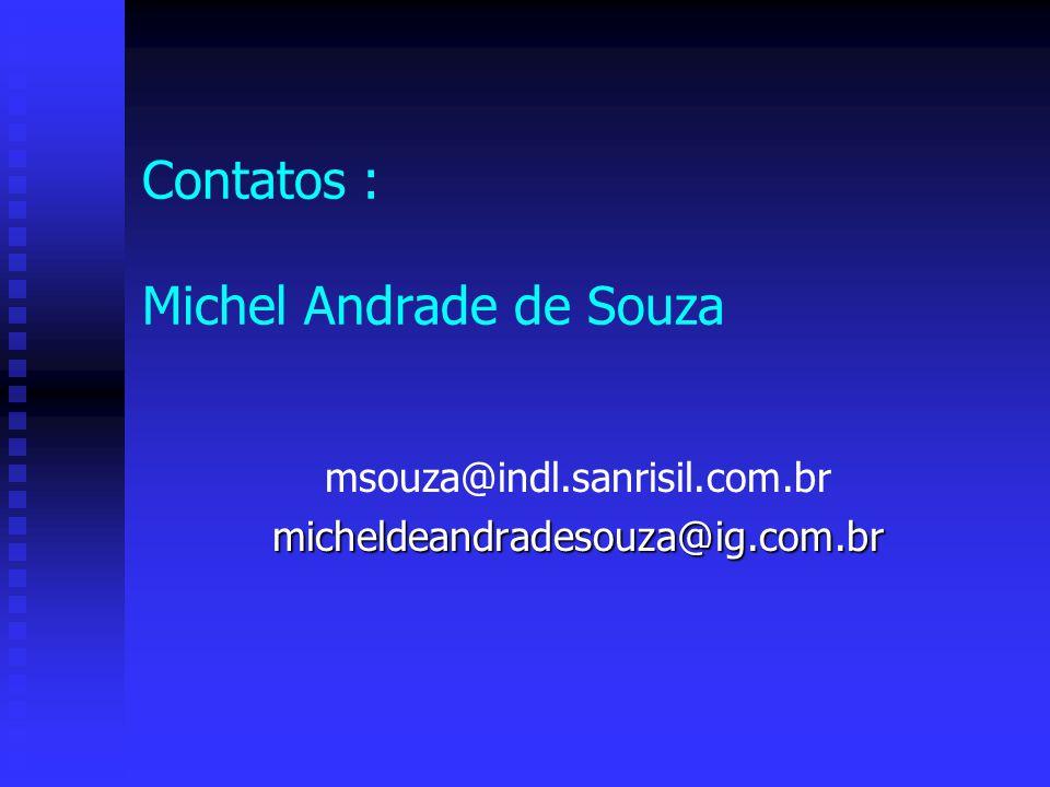 Contatos : Michel Andrade de Souza msouza@indl.sanrisil.com.brmicheldeandradesouza@ig.com.br