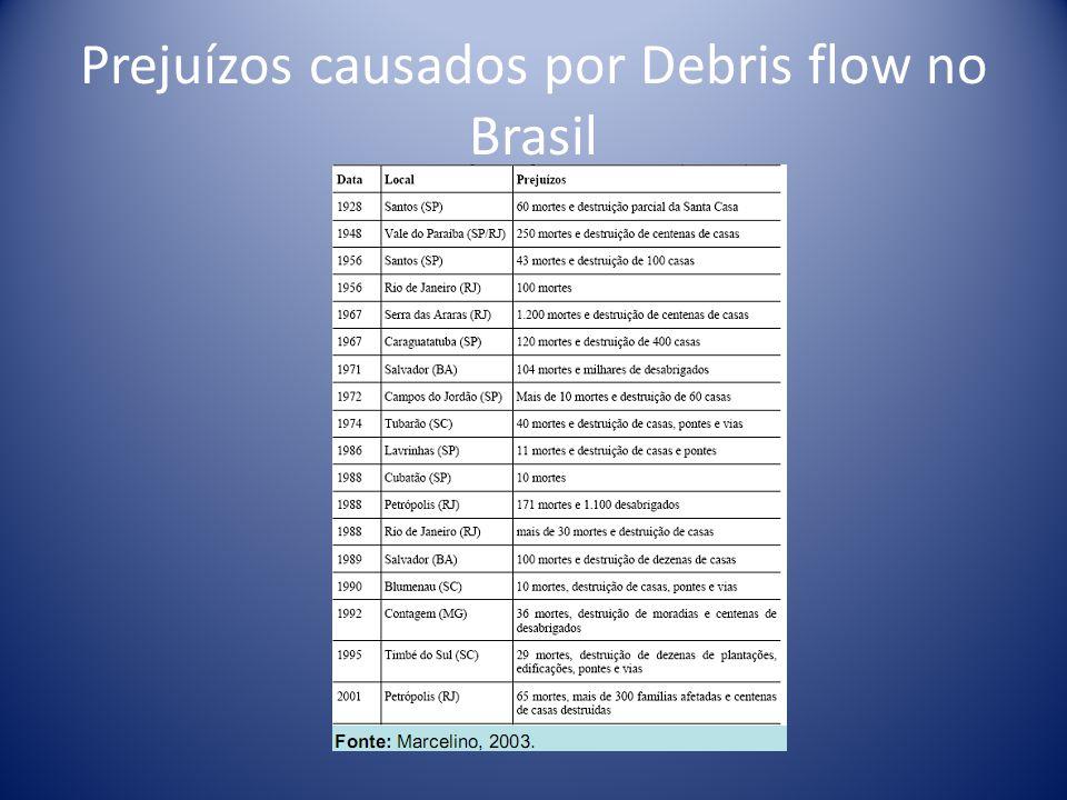 Prejuízos causados por Debris flow no Brasil