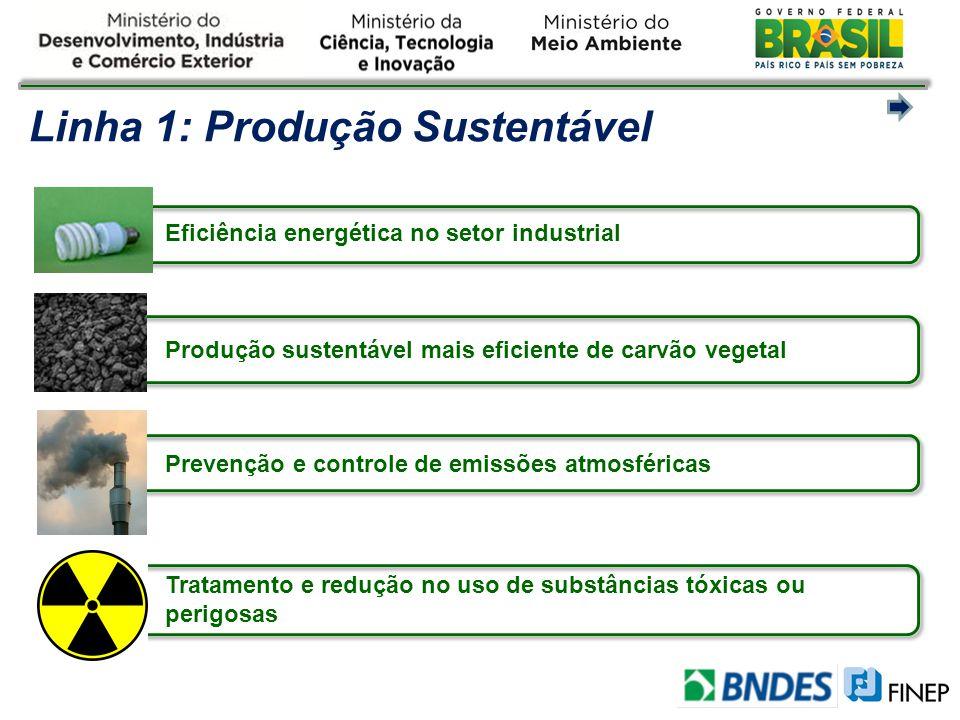 Linha 1: Produção Sustentável Eficiência energética no setor industrial Produção sustentável mais eficiente de carvão vegetal Prevenção e controle de