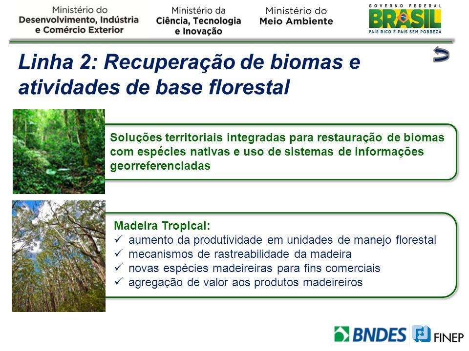 Soluções territoriais integradas para restauração de biomas com espécies nativas e uso de sistemas de informações georreferenciadas Linha 2: Recuperaç