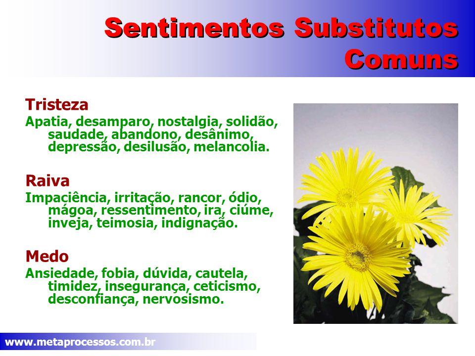www.metaprocessos.com.br Sentimentos Substitutos Comuns Tristeza Apatia, desamparo, nostalgia, solidão, saudade, abandono, desânimo, depressão, desilusão, melancolia.