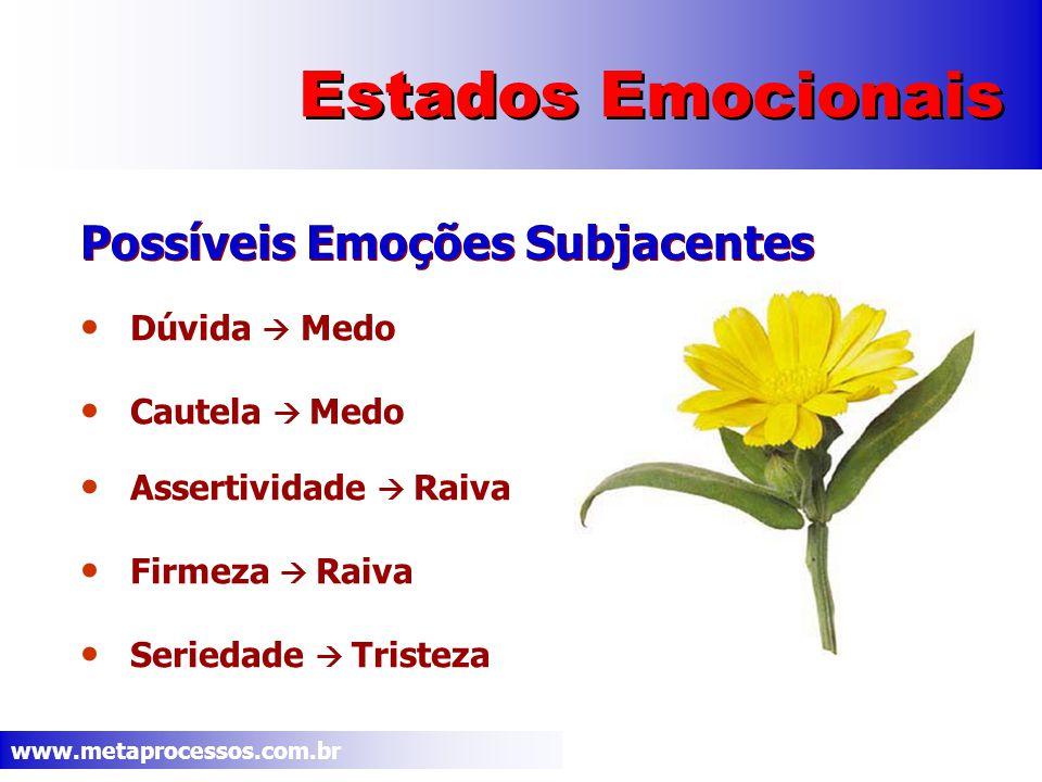 www.metaprocessos.com.br Estados Emocionais Dúvida Medo Cautela Medo Assertividade Raiva Firmeza Raiva Seriedade Tristeza Possíveis Emoções Subjacentes