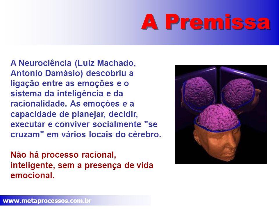 www.metaprocessos.com.br A Premissa A Neurociência (Luiz Machado, Antonio Damásio) descobriu a ligação entre as emoções e o sistema da inteligência e da racionalidade.