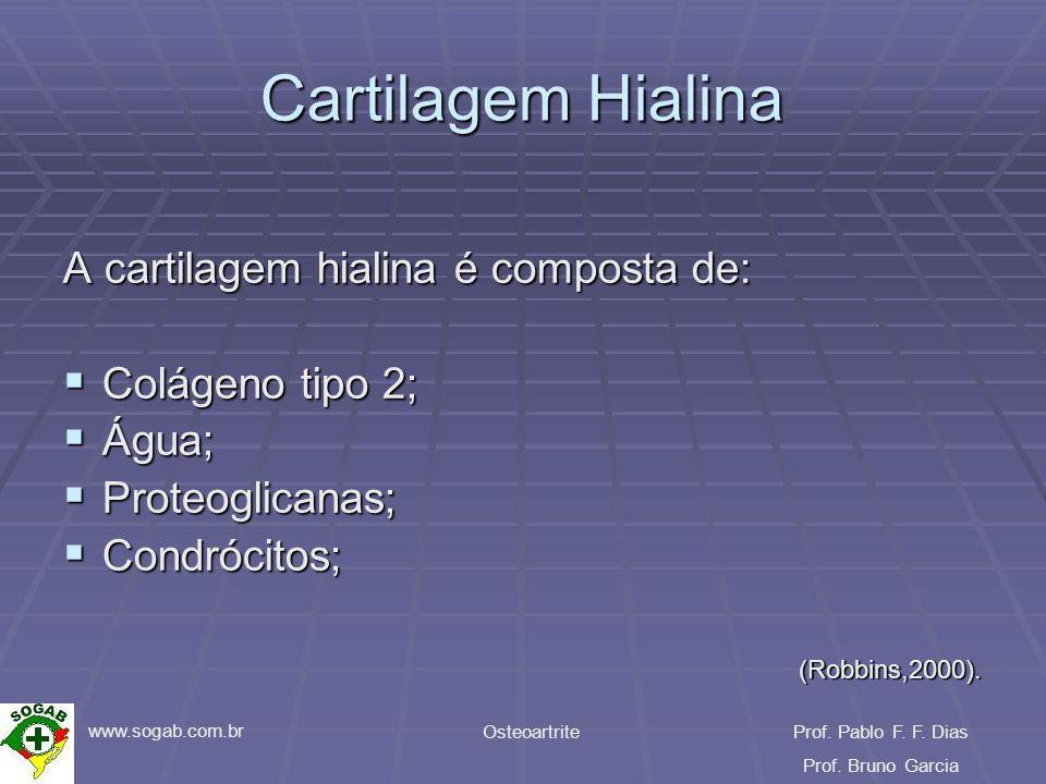 www.sogab.com.br OsteoartriteProf. Pablo F. F. Dias Prof. Bruno Garcia Cartilagem Hialina A cartilagem hialina é composta de: Colágeno tipo 2; Colágen