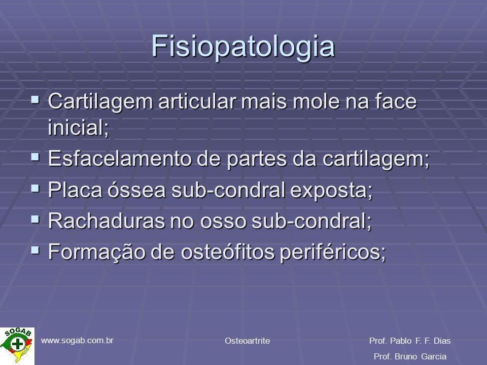 www.sogab.com.br OsteoartriteProf. Pablo F. F. Dias Prof. Bruno Garcia Fisiopatologia Cartilagem articular mais mole na face inicial; Cartilagem artic