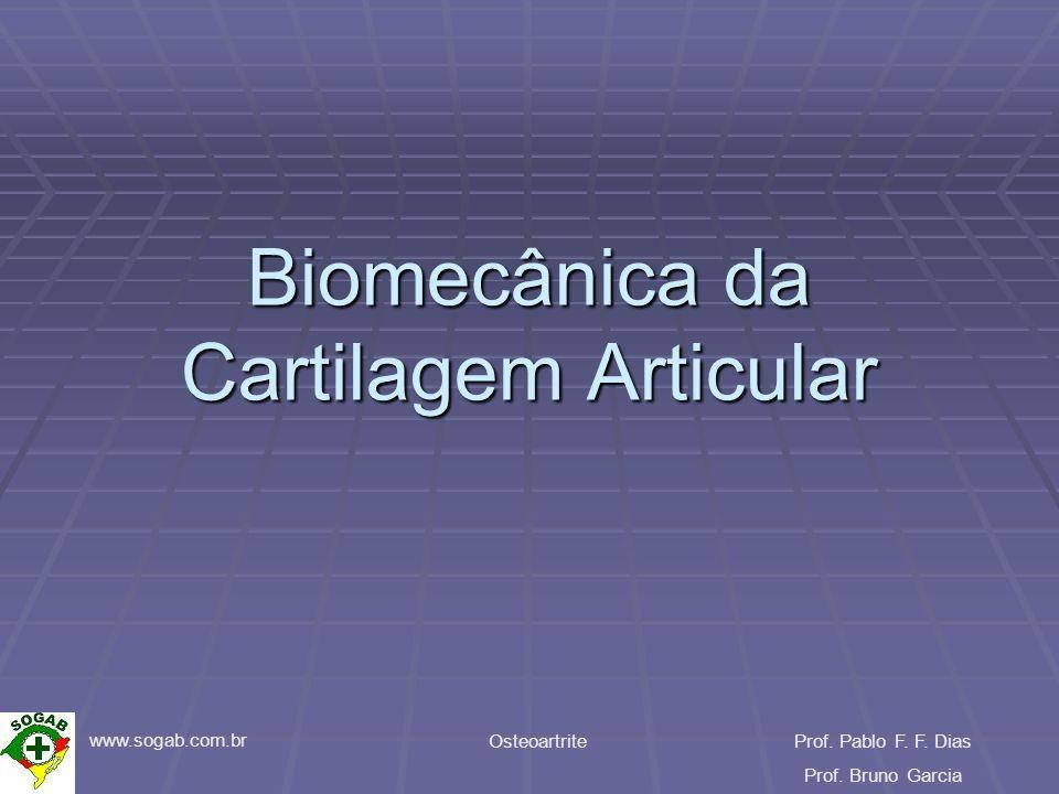 www.sogab.com.br OsteoartriteProf. Pablo F. F. Dias Prof. Bruno Garcia Biomecânica da Cartilagem Articular