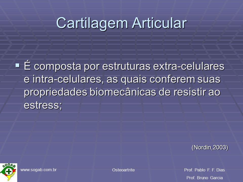www.sogab.com.br OsteoartriteProf. Pablo F. F. Dias Prof. Bruno Garcia Cartilagem Articular É composta por estruturas extra-celulares e intra-celulare