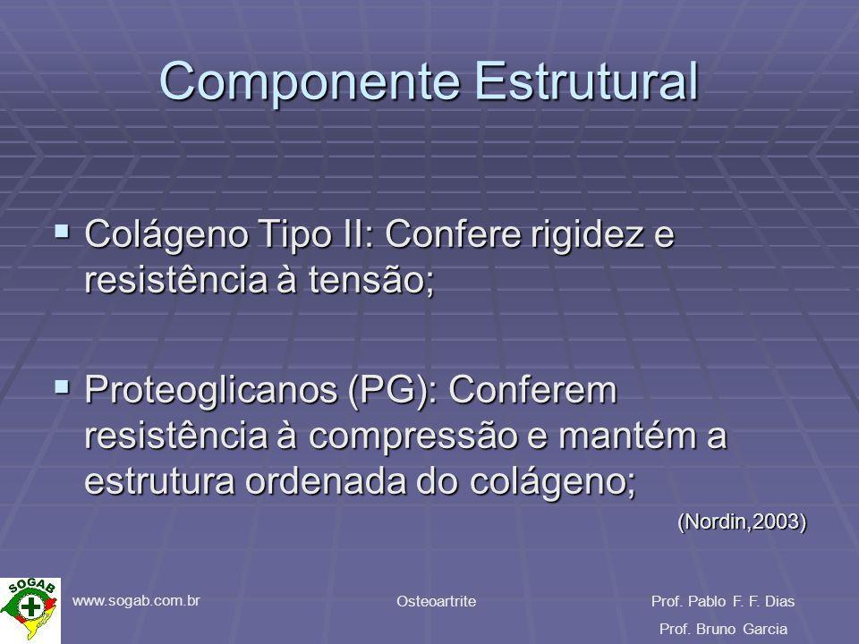 www.sogab.com.br OsteoartriteProf. Pablo F. F. Dias Prof. Bruno Garcia Componente Estrutural Colágeno Tipo II: Confere rigidez e resistência à tensão;