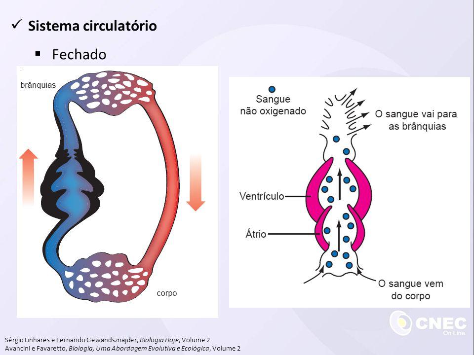 Sistema circulatório Fechado Sérgio Linhares e Fernando Gewandsznajder, Biologia Hoje, Volume 2 Avancini e Favaretto, Biologia, Uma Abordagem Evolutiv