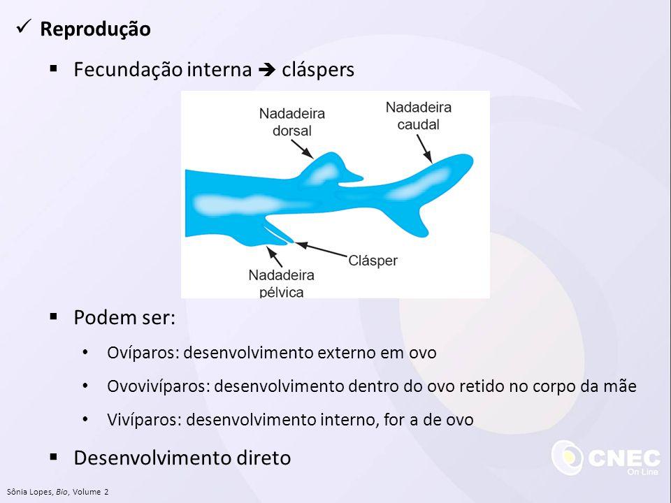 Reprodução Fecundação interna cláspers Podem ser: Ovíparos: desenvolvimento externo em ovo Ovovivíparos: desenvolvimento dentro do ovo retido no corpo