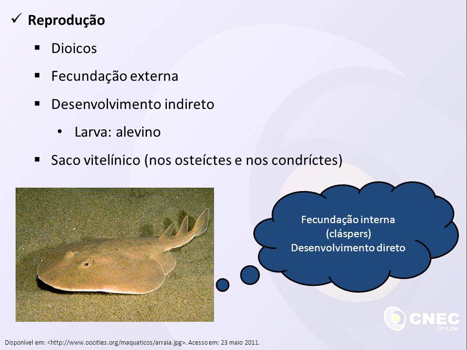 Reprodução Dioicos Fecundação externa Desenvolvimento indireto Larva: alevino Saco vitelínico (nos osteíctes e nos condríctes) Disponível em:. Acesso