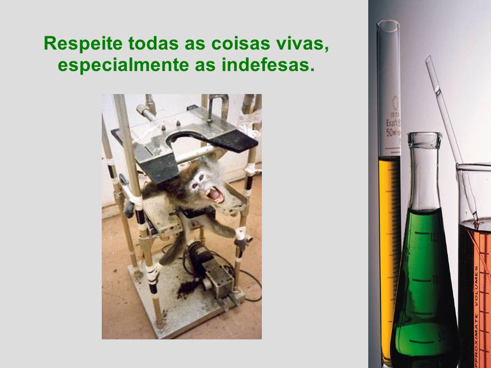 A utilização dos animais em experimentos só se justificaria, do ponto de vista deste estudo, e assim mesmo desde que minimizada a dor ao máximo, quand