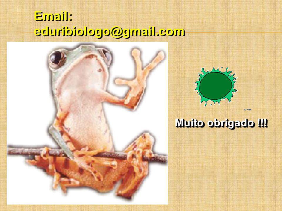 Email: eduribiologo@gmail.com Email: eduribiologo@gmail.com Muito obrigado !!!