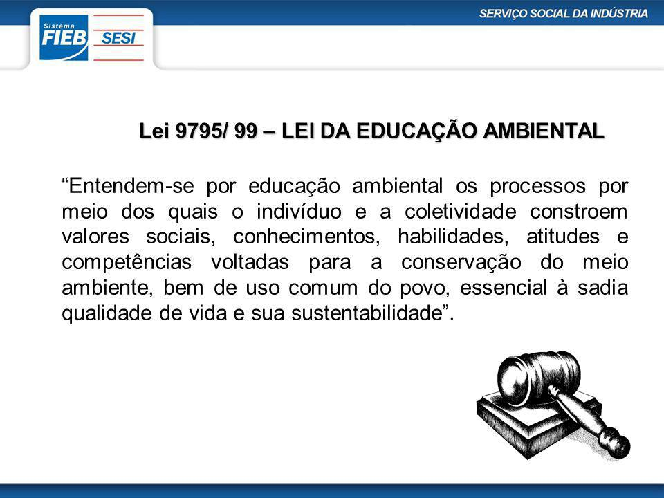 Entendem-se por educação ambiental os processos por meio dos quais o indivíduo e a coletividade constroem valores sociais, conhecimentos, habilidades,