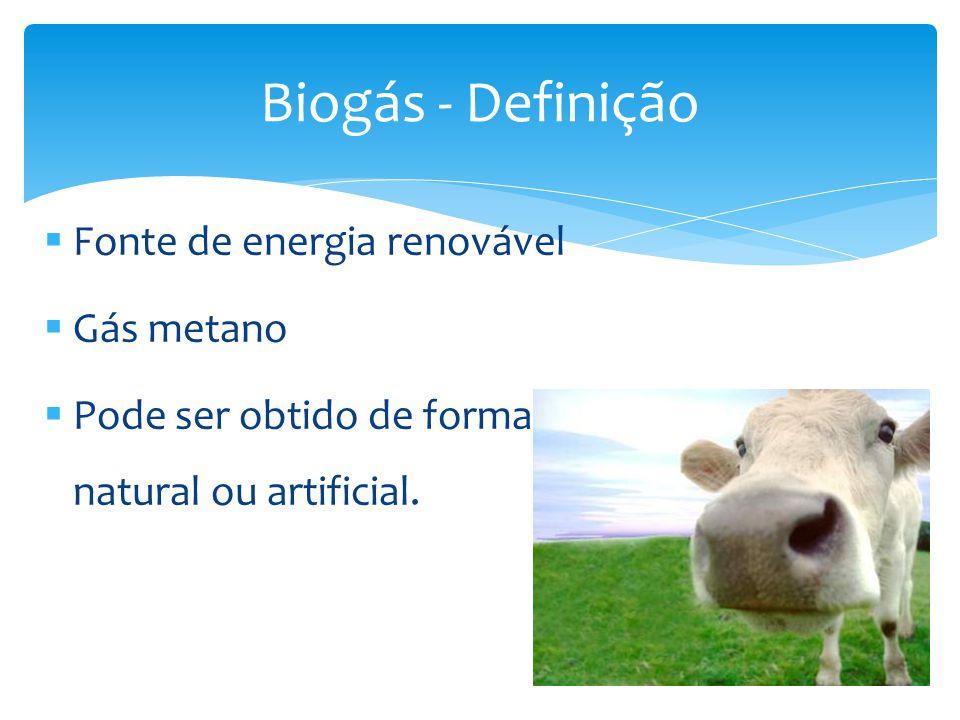Substituição do GLP e do Gás natural; [V] Pode ser utilizado para geração de energia elétrica; Queima mais limpa; [V] Investimentos muito elevados; [D] Vantagens e Desvantagens